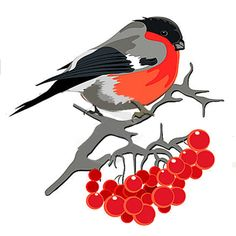 Батик Christmas Card Crafts, Christmas Drawing, Christmas Cards To Make, Inkscape Tutorials, Alcohol Ink Crafts, Christmas Characters, Kids Room Art, Bird Drawings, Christmas Illustration