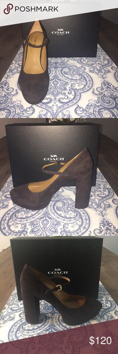"NIB Coach Goldie Suede Platform Pumps in Chestnut NIB Chestnut Suede. Mary Jane platform with 4 1/2. "" heels. Gold detailing. Suede upper and leather sole. This is a great fall shoe!! Comes from a smoke-free, pet-free home. Coach Shoes Platforms"