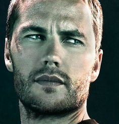 Taylor Kitsch...don't really know who he is. Don't care. Look at that.