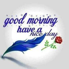 Good Day, Good Morning, Buen Dia, Buen Dia, Hapy Day, Bonjour, Good Morning Wishes