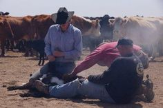 Come join cowboys for a holiday at a working ranch in Colorado - Chico Basin Ranch. #ChicoBasinRanch