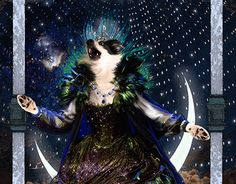 The Canine Opera House - Queen of the Night The Magic Flute, Brave, Opera House, Queen, Night, Concert, Gallery, Artist, Behance