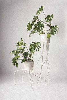 presented at dutch design week tim van de weerd has invented his own species of plant pots with the 'monstera' series. Deco Floral, Arte Floral, Potted Plants, Indoor Plants, Plant Pots, Indoor Gardening, Modern Plant Stand, Plant Stands, Pot Plante