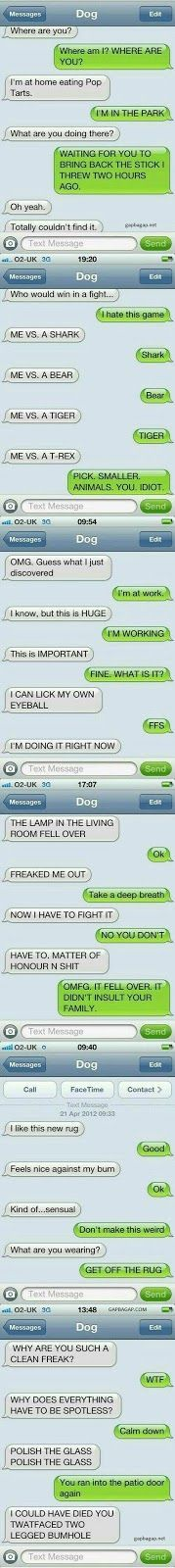 """5+ Funny Text Messages ft. Funny Dogs """"How To Start A Game Or Utility App Business In Less Than A Week... With Zero App Development!"""""""