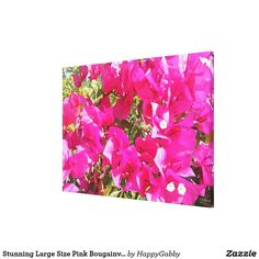 Stunning Large Size Pink Bougainvillea Close up Canvas Print