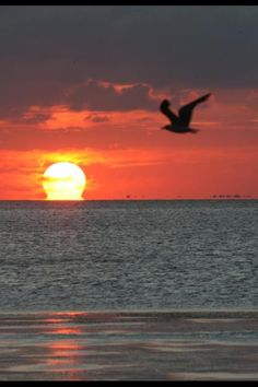 Sunset on South Padre Island Tx  For information about South Padre Island events and deals, visit us at www.EnjoySPI.com