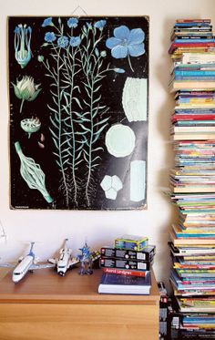 Pojan huonetta koristaa vanha koulutaulu. Botanical Prints, Print Patterns