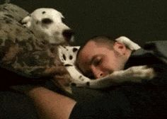 Shhh, It's Okay Human, It's Okay