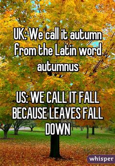 UK: We call it autumn from the Latin word autumnus  US: WE CALL IT FALL BECAUSE LEAVES FALL DOWN