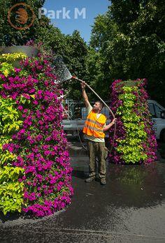 Obsługa miast - pielęgnacja zieleni
