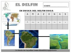 El delfín Dolphins, Projects, Pink Dolphin, Learning To Write, Animales, Log Projects, Common Dolphin, Seal