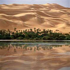 Mandara Lake, Libya (now drained). Places Around The World, Around The Worlds, Desert Aesthetic, Desert Oasis, Sunny Beach, Graphic Design Posters, Travel Inspiration, Travel Destinations, Beautiful Places