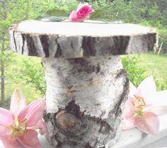 birch tree decorated for wedding | ... Birch 9 Inch Cake Stand - Birch Wood Lovely and Elegant Wedding Decor