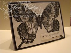 Swallowtail and Spotlighting Technique with Deb Valder by djlab - Cards and Paper Crafts at Splitcoaststampers