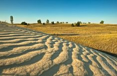 Dunes in Fülöpháza. Sand area of the Ancient Danube alluvial remains. After filling up the river Danube left the area and moved by the wind started to sand sediment accumulation. Budapest, Vineyard, National Parks, Places To Visit, Public, Country Roads, Neon, River, Nature