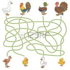 Maze game for children: help the young find their parents (farm birds: duck, goose, turkey, chicken) , Maze Game, Preschool Worksheets, Pre School, Games For Kids, Turkey Chicken, Kids Rugs, Birds, Education, Creative