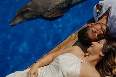 Wedding Blog, Destination Wedding, Wedding Photos, Dream Wedding, Unique Weddings, Dolphins, Photo Sessions, Adventure, Animals