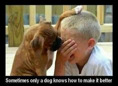 Truth...  #dogsandkids