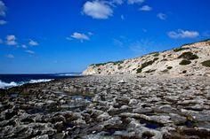 Estufador - Formentera - Mediterranea Pitiusa