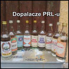Alcohol Memes, Rainbow Colors, All The Colors, Childhood Memories, Poland, Wise Words, Vodka, Ale, Jokes
