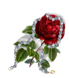 Rose Glitter Graphics | roses up candles hearts angels roses special roses 2 roses 3