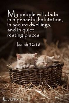 My people will dwell in a peaceful habitation, In secure dwellings, and in quiet resting places, [Isaiah 32:18}