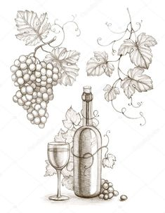 Illustration about Pencil drawing of wine bottle and grape. Illustration of life, grapevine, brown - 30376302 Grape Drawing, Vine Drawing, Leaf Drawing, Drawing Tips, Pencil Art, Pencil Drawings, Art Drawings, Wood Burning Patterns, Wood Burning Art