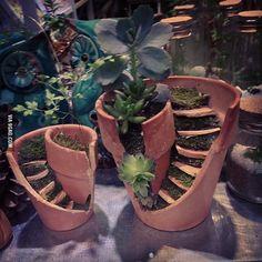Broken pots I like a lots