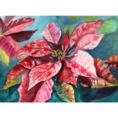 poinsettia painting, original watercolor paintings, christmas art,... (€105) via Polyvore featuring home, home decor, poinsettia, red home decor, mele, pink home decor and red home accessories