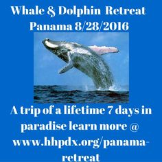 Join me on a trip of a lifetime  www.hhpdx.org/Panama-retreat