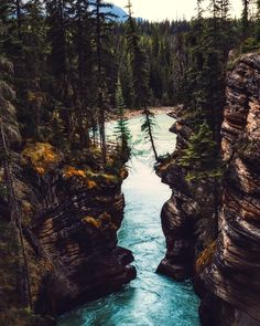 The Rockies in Canada.