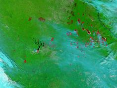 Fires, smoke, and burn scars in eastern Russia (false color)