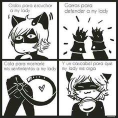 Aquí mostrare imágenes de Ladybug y chat noir, memes comics , etc. As… #detodo De Todo #amreading #books #wattpad