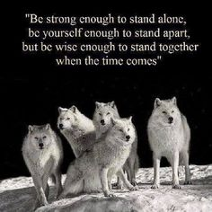 """Be strong enough to stand alone, be yourself enough to stand apart, but be wise enough to stand together when the time comes."""