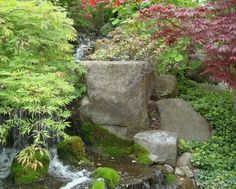 Anderson Japanese Gardens - love the moss and this square boulder.