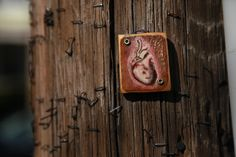 Lilliputian Art On Electric Poles: Patrick Picou Harrington In Albany Teds Woodworking, Woodworking Projects, Green Life, Home Improvement, Things To Sell, Tiny Homes, Telephone, Utility Pole, Fairies
