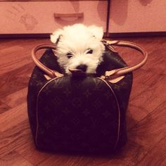 If you are going somewhere, you are NOT going without me!
