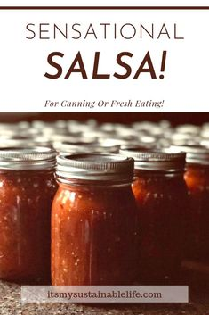 Who doesn't love a great salsa? This super easy, as spicy or not as you want it, salsa recipe made with fresh tomatoes and vinegar is as awesome to eat as it is easy to make. Salsa Recipe With Vinegar, Best Canned Salsa Recipe, Salsa Canning Recipes, Canned Salsa Recipes, Tomato Salsa Recipe, Canning Salsa, Fresh Tomato Recipes, Fresh Tomato Salsa, Homemade Salsa