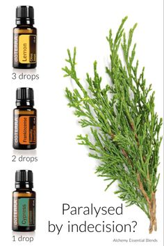Essential oils for indecision