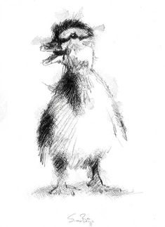 ideas bird illustration ink sketch for 2019 Bird Sketch, Sketch A Day, Sketch Ideas, Animal Sketches, Animal Drawings, Bird Silhouette Tattoos, 3d Drawing Techniques, Duck Drawing, Charcoal Art