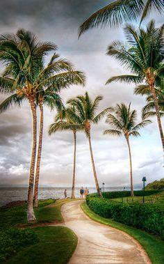 Beautiful Maui!!! I'd love to go back!!!