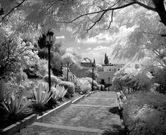 Medina-Sidonia_5 by David Wheatley, via Flickr