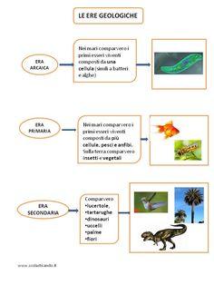 Education, English, Studio, Geology, Italian Language, Mind Maps, Activities, Culture, Studios