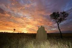 """Lonely Planet has chosen the Kimberley in the world's Top 10 regions to visit in 2014. The AAMU will start 2014 with an exhibition about the Kimberley: """"Country to coast. Colours of the Kimberley""""."""