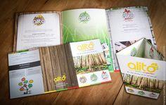 Design logo met onderverdelingen, brochure,... inclusief drukwerk!  www.twindesignbvba.be