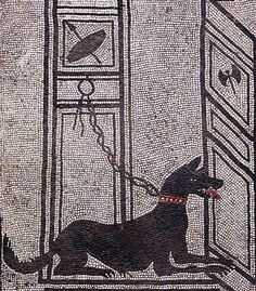 Guard. Roman Mosaic of a Chained Dog, Entrance of the House of Paquius Proculus, Pompeii