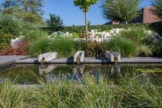 Beste afbeeldingen van tuinvijver garden gardens en gardening