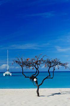 Barduda Island, Caribbean Sea
