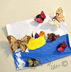 How to make butterfly magnets for a spring refrigerator..... - Jennifer Rizzo