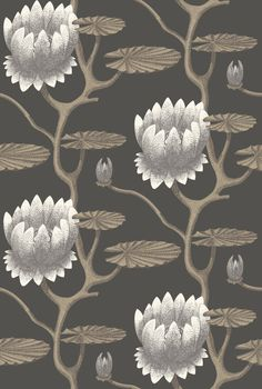 Summer Lily wallpaper by Cole & Son